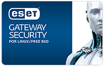ESET Gateway Security  pudełko